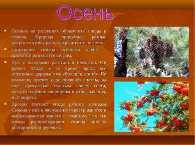 Осенью на растениях образуются плоды и семена. Природа придумала разные хитро...