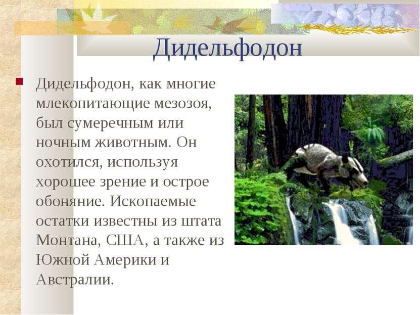 Дидельфодон Дидельфодон, как многие млекопитающие мезозоя, был сумеречным или...