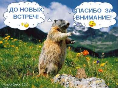 СПАСИБО ЗА ВНИМАНИЕ! ДО НОВЫХ ВСТРЕЧ! Новосибирск 2010, ЛИТ