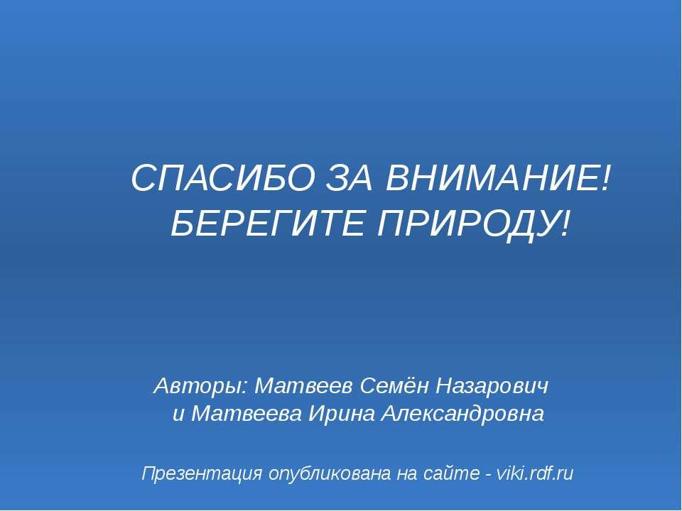 Презентация опубликована на сайте - viki.rdf.ru Авторы: Матвеев Семён Назаров...