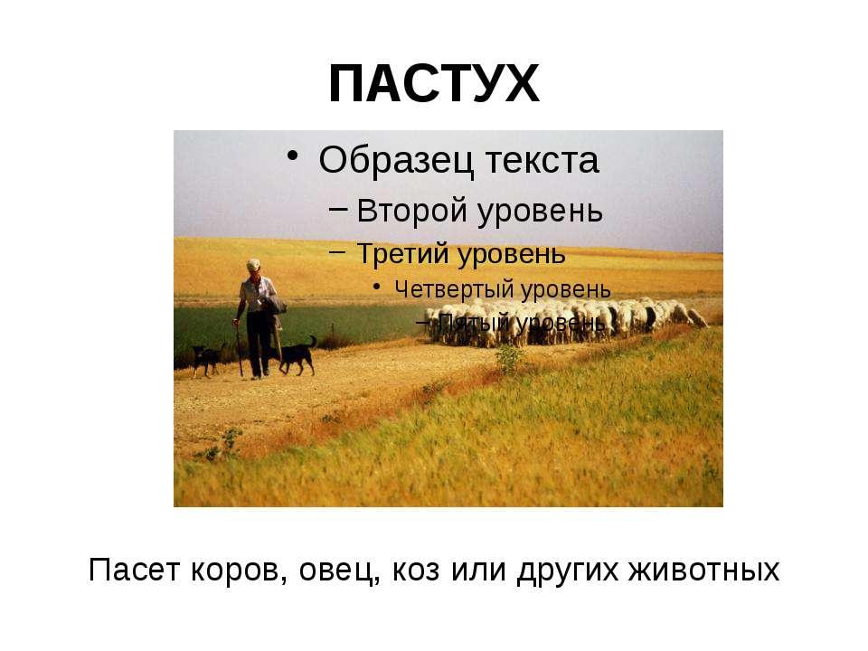 Переводчик В обязанности переводчика входит: организация и проведение экскурс...