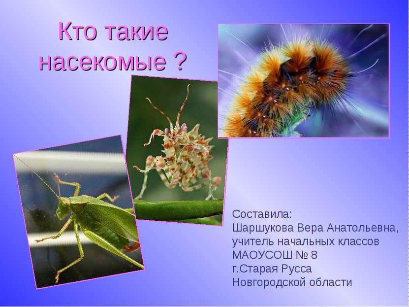 Кто такие насекомые ? Составила: Шаршукова Вера Анатольевна, учитель начальны...