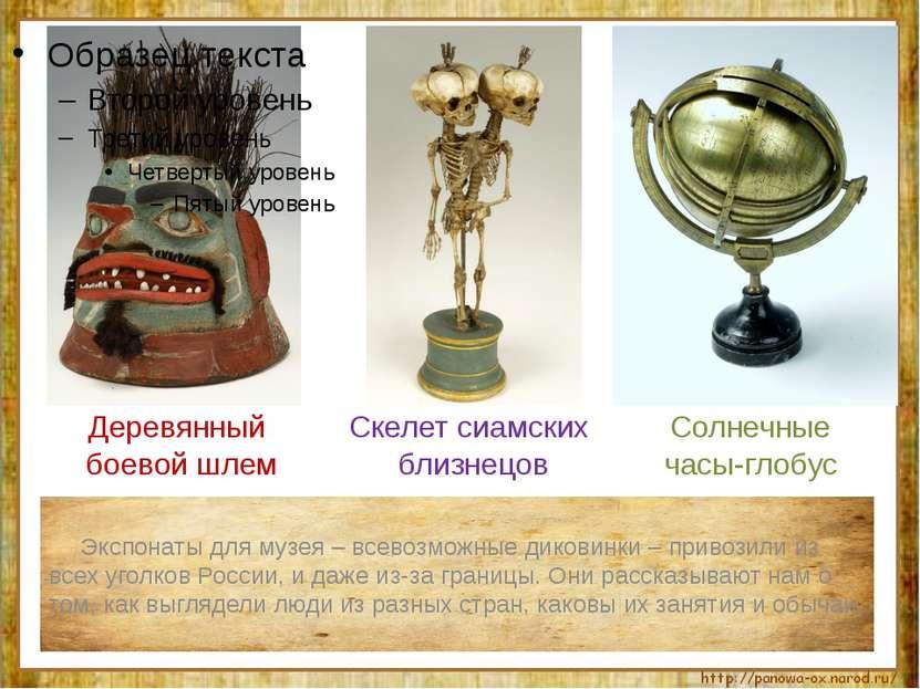 Экспонаты для музея – всевозможные диковинки – привозили из всех уголков Росс...