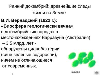 Эукариоты (ядерные) - организмы, клетки которых содержат оформленные ядра. К ...