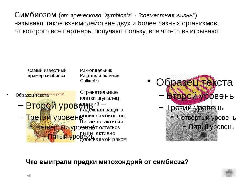 Палеозой: битва гигантов девон Среди плакодерм появились менее бронированные,...