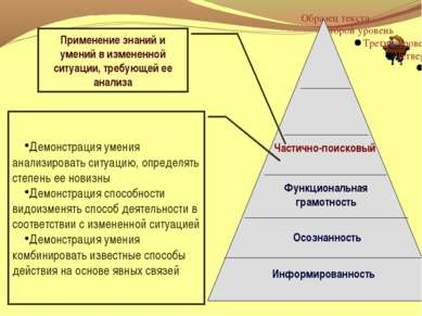 Функциональная грамотность Осознанность Информированность Применение знаний и...