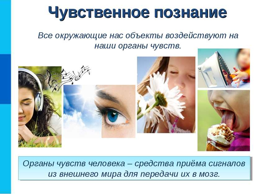 Чувственное познание Органы чувств человека – средства приёма сигналов из вне...