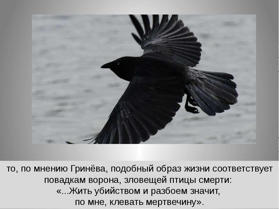 то, по мнению Гринёва, подобный образ жизни соответствует повадкам ворона, зл...