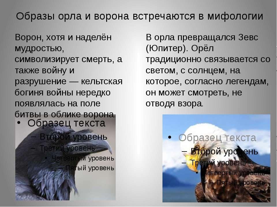 Образы орла и ворона встречаются в мифологии Ворон, хотя и наделён мудростью,...