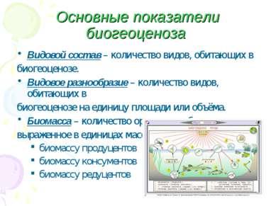 Основные показатели биогеоценоза Видовой состав – количество видов, обитающих...