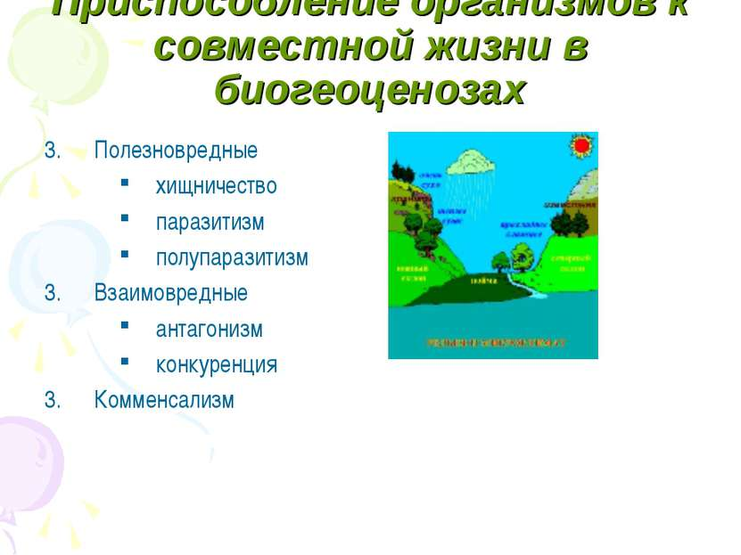 Приспособление организмов к совместной жизни в биогеоценозах Полезновредные х...