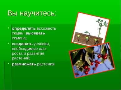 Вы научитесь: определять всхожесть семян; высевать семена; создавать условия,...