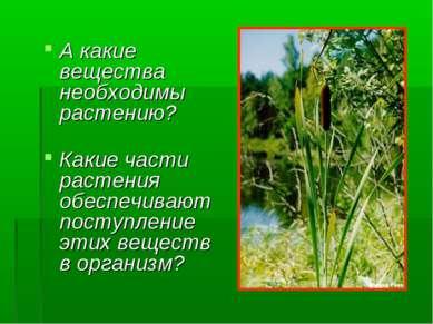 А какие вещества необходимы растению? Какие части растения обеспечивают посту...