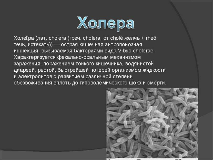 Холе ра (лат. cholera (греч. cholera, от cholē желчь + rheō течь, истекать)) ...