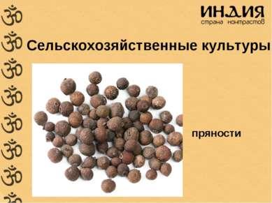Сельскохозяйственные культуры пряности