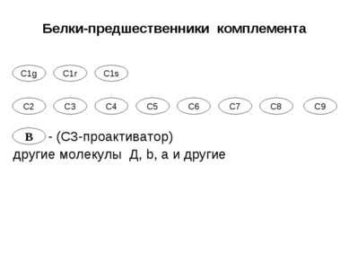 С1g С1r С1s С2 С7 С3 С4 С5 С6 С8 С9 B Белки-предшественники комплемента - (С3...