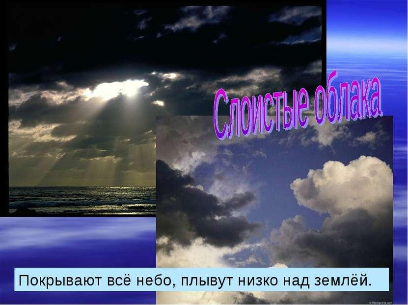 Покрывают всё небо, плывут низко над землёй.