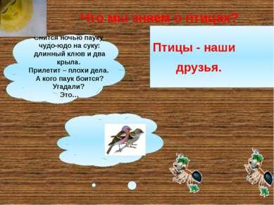 Что мы знаем о птицах? Птицы - наши друзья. Снится ночью пауку чудо-юдо на су...
