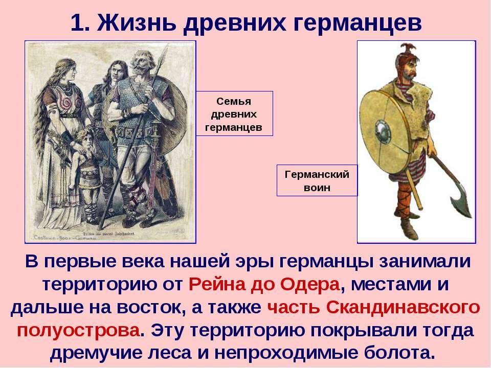 1. Жизнь древних германцев В первые века нашей эры германцы занимали территор...