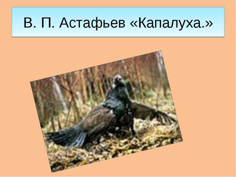 В. П. Астафьев «Капалуха.»