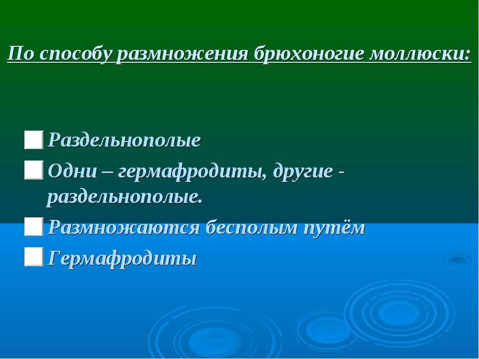По способу размножения брюхоногие моллюски: Раздельнополые Одни – гермафродит...