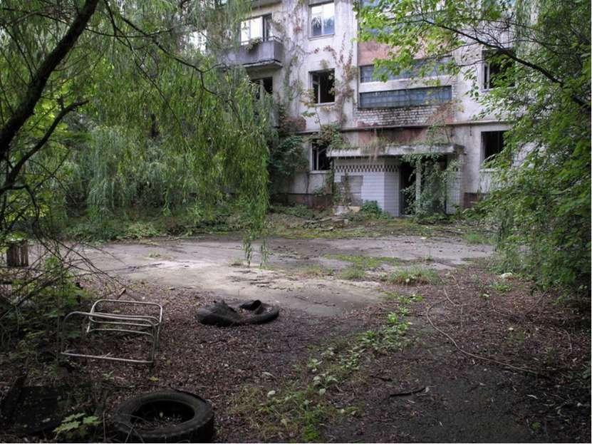 """Чернобыль - это самый эффективный """"заповедник"""". Природа """"зализывает раны"""", ка..."""