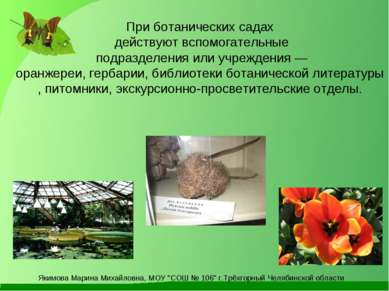 При ботанических садах действуют вспомогательные подразделения или учреждения...
