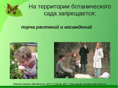 На территории ботанического сада запрещается: порча растений и насаждений Яки...