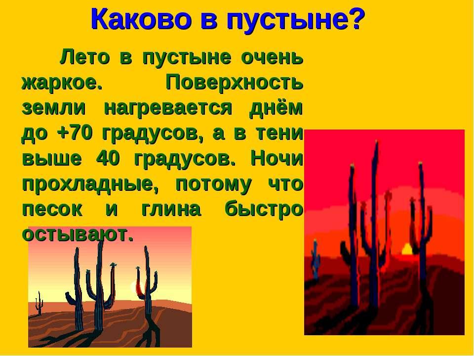 Каково в пустыне? Лето в пустыне очень жаркое. Поверхность земли нагревается ...