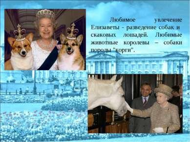 Любимое увлечение Елизаветы - разведение собак и скаковых лошадей. Любимые жи...