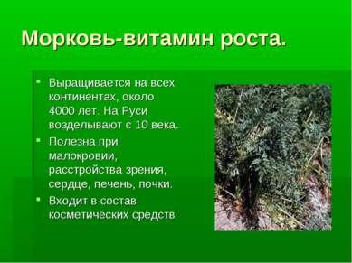 Морковь-витамин роста. Выращивается на всех континентах, около 4000 лет. На Р...
