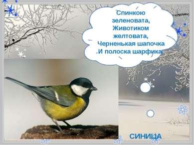 - Спинкою зеленовата, Животиком желтовата, Черненькая шапочка Иполоска шар...