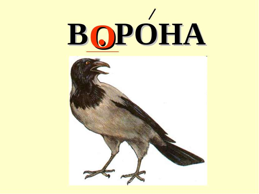 В . РОНА О