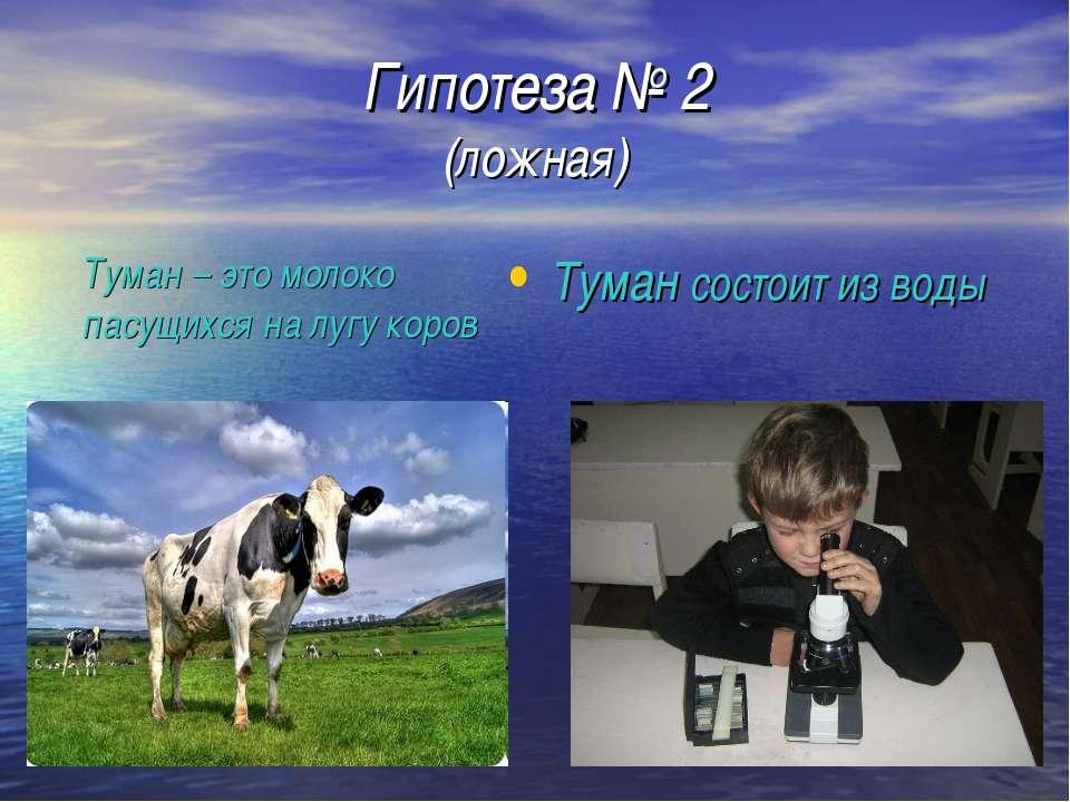 Гипотеза № 2 (ложная) Туман состоит из воды Туман – это молоко пасущихся на л...