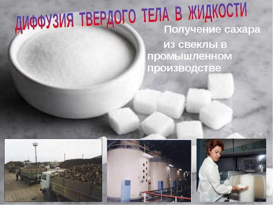 Получение сахара из свеклы в промышленном производстве