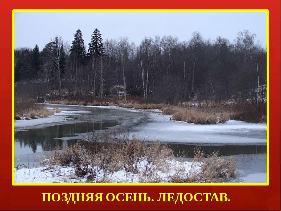 ПОЗДНЯЯ ОСЕНЬ. ЛЕДОСТАВ.
