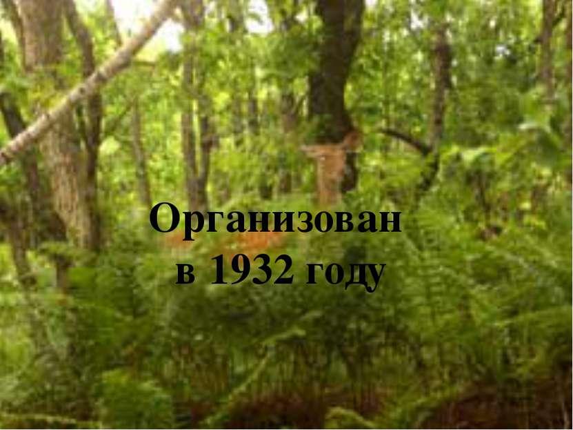 Организован в 1932 году