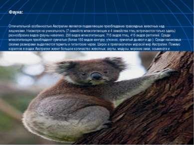 Фауна: Отличительной особенностью Австралии является подавляющее преобладание...