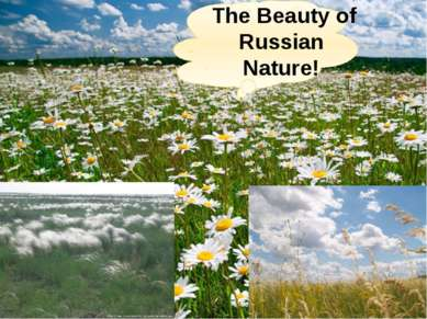 The Beauty of Russian Nature!