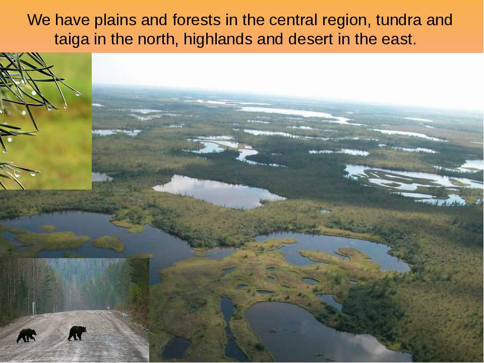 We have plains and forests in the central region, tundra and taiga in the nor...