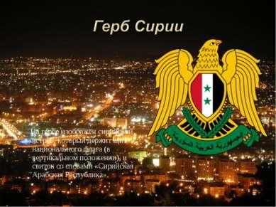 На гербе изображён сирийский ястреб, который держит щит национального флага (...