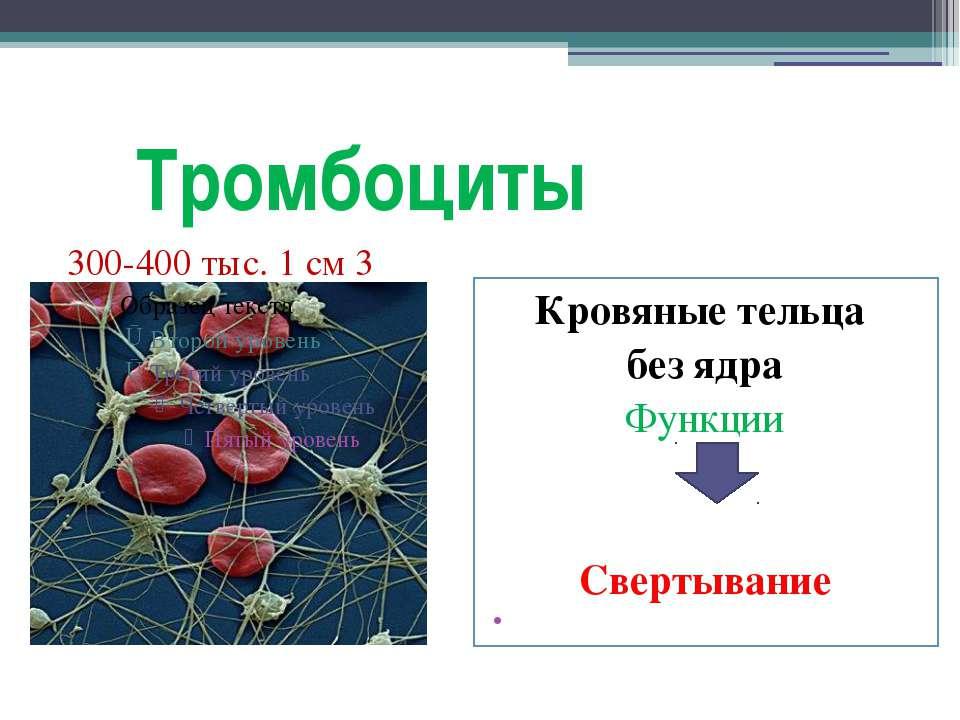 Тромбоциты Кровяные тельца без ядра Функции Свертывание 300-400 тыс. 1 см 3