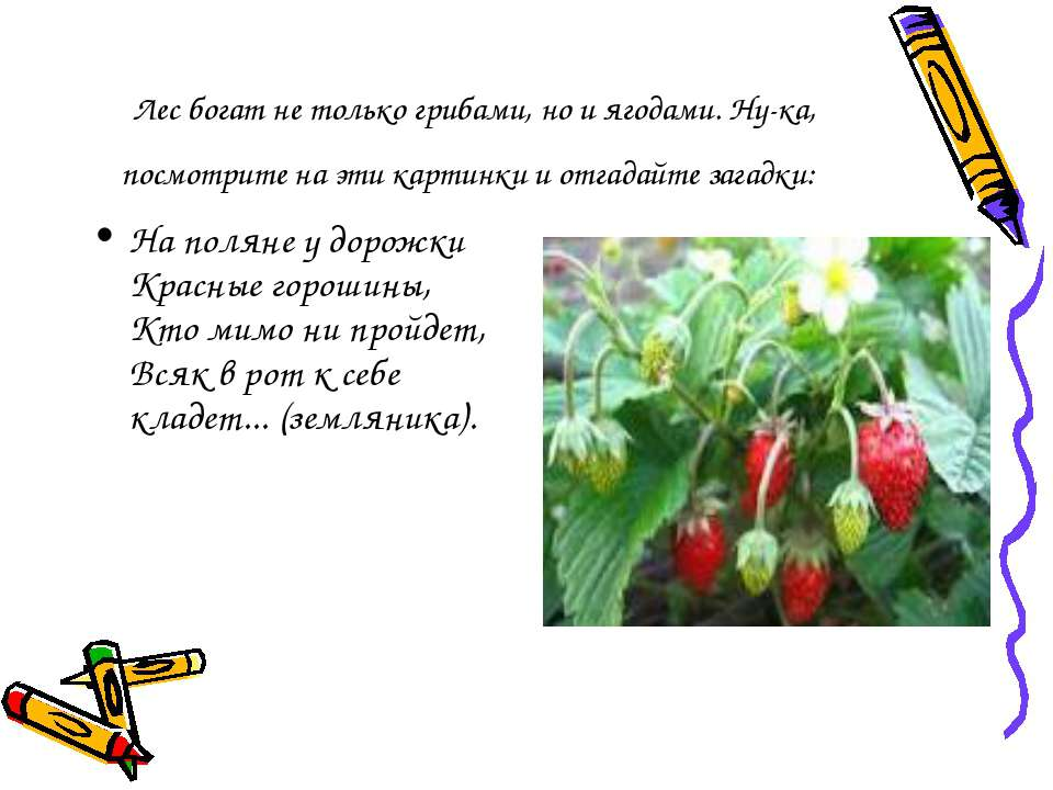 Лес богат не только грибами, но и ягодами. Ну-ка, посмотрите на эти картинки ...