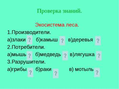 Экосистема леса. 1.Производители. а)злаки б)камыш в)деревья 2.Потребители. а)...