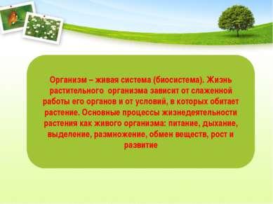 Организм – живая система (биосистема). Жизнь растительного организма зависит ...