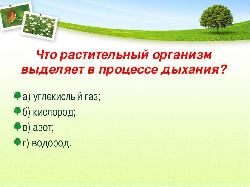 Что растительный организм выделяет в процессе дыхания? а) углекислый газ; б) ...
