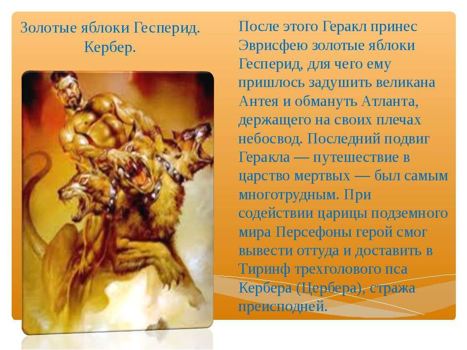 Золотые яблоки Гесперид. Кербер. После этого Геракл принес Эврисфею золотые я...