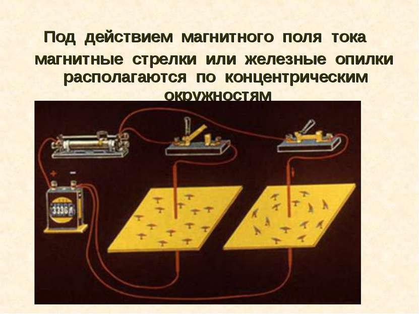 Под действием магнитного поля тока магнитные стрелки или железные оп...