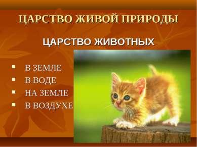 ЦАРСТВО ЖИВОЙ ПРИРОДЫ ЦАРСТВО ЖИВОТНЫХ В ЗЕМЛЕ В ВОДЕ НА ЗЕМЛЕ В ВОЗДУХЕ