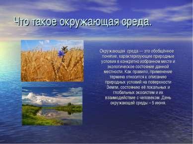 Что такое окружающая среда. Окружающая среда — это обобщённое понятие, характ...